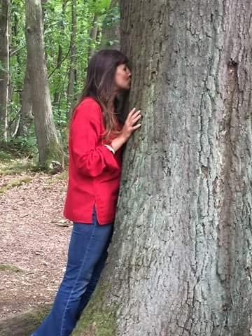 06-tree-contact