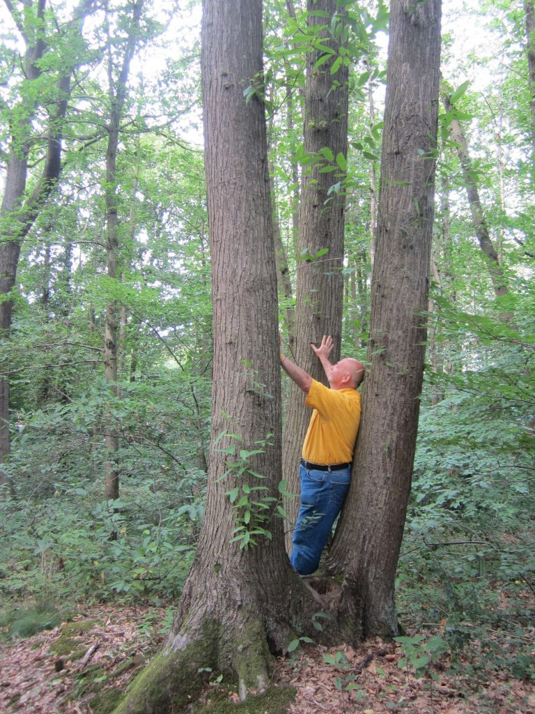 07-tree-contactr