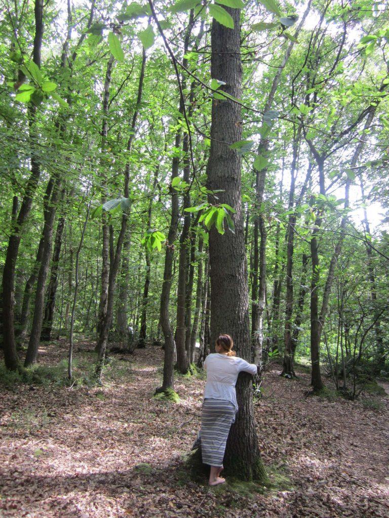 08-tree-contactr