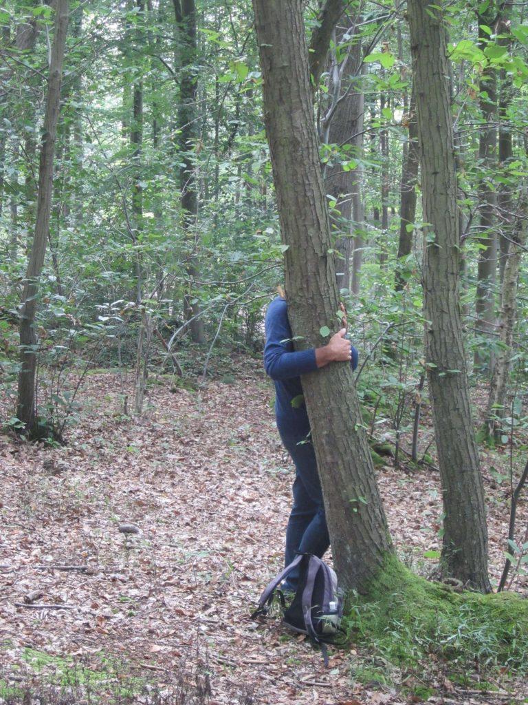 22-tree-contactr